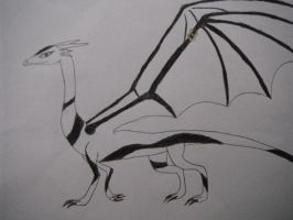 Tiamat the Dragon by SDRseries