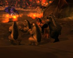 Druids of the Beast at Onyxia by Druidsofthebeast