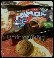Photo - Hello Panda Snack.. by LuminousAtelier