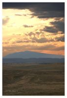 Gold over Elk Mountain by wyorev