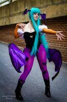 Morrigan 5 by Lily-in-Leather