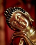 Simply Buddha by ruthbeckersc