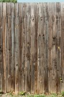 Wood Texture - 27 by AGF81