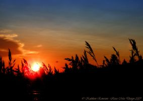July Sunset by rocamiadesign