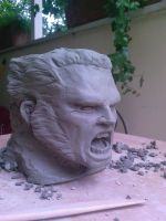 wolverine head by cavalars