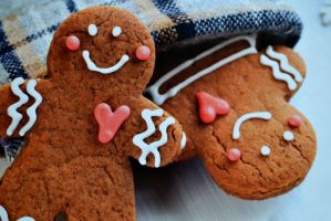 SWEET GINGERBREAD by passionNdesire