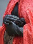 Black gloves holding crow by InKi-Stock