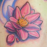 Pink Lotus Flower by Sirius-Tattoo