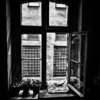 A view from a window by RafalBigda
