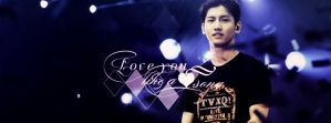 love you like a love song by bibi97nd