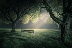 In The Spotlight by MikkoLagerstedt