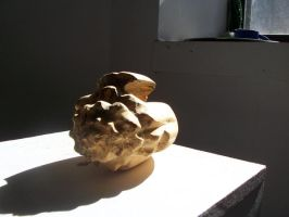 Sea Shell -front by redawson