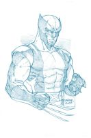 Wolverine Pencil Sketch by DaggerPoint