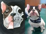 Custom French Bulldog Skull by sobeyondthis