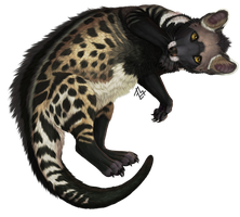 Commission: civet by AnastasiyaVB