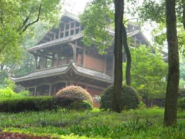 Wooden Temple by giadrosich