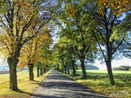 Autumn Alley by PaSt1978