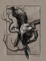 Huginn and Muninn by DanielGovar