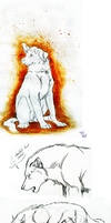 Doodle Dump -assorted canines- by KigerwolfRD