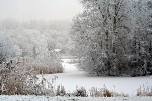 winterland 57 by priesteres-stock