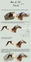 Mane and Tail Tutorial by FinnaJei