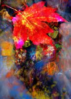 foral designs 04 by nosoart