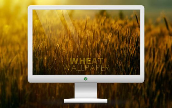 WHEAT WALLPAPER by leoveanul