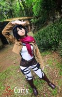 Shingeki-no-kyojin: Mikasa Ackerman by kuricurry