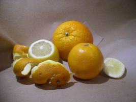 Citrus 3 by SanStock