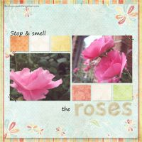 Stop and Smell the roses by Bickhamsarah