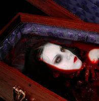 Coffin of Blood by VampHunter777