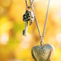 A Heart and It's Key by TheSaval