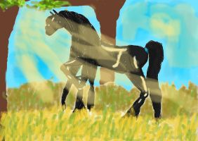 HORSE by 99andreea