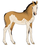 Kahuvaa Foal Design by Horse-Emotion