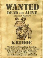 Krimoe Wanted Poster by LarsLasse