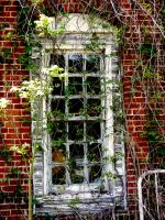 Window choked in vines by eeyorefan