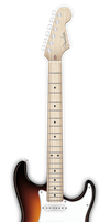 Fender Stratocaster by near43