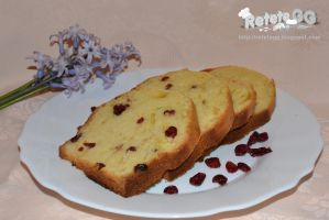 Cranberries cake by DanutzaP
