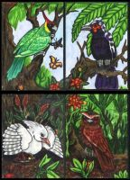 Bird Life of New Caledonia by lemurkat