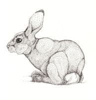 Seated Rabbit by artifexToils