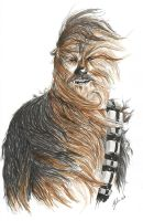 Chewbacca by MikimusPrime