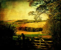 My Wolds Way by Philip-ed