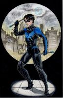 Nightwing commission by AnielaAbair