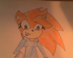 Hina the Hedgehog 1 by TheHedgehogMaria