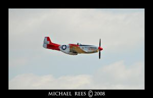 P-51D Mustang  a by Luv2suspendyou