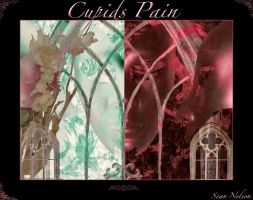 Cupids Pain by silentfuneral