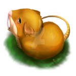 #020 Raticate by feh-rodrigues