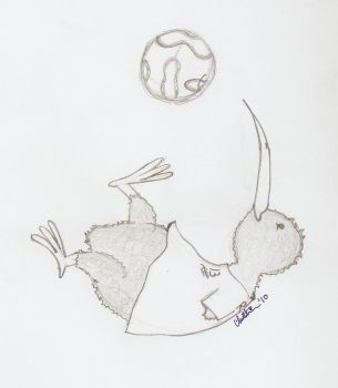 Kiwi Soccer by Madre-suicide