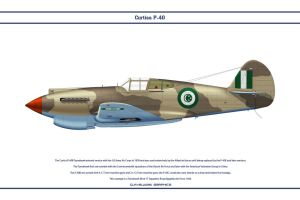 P-40C Egypt 1 by WS-Clave