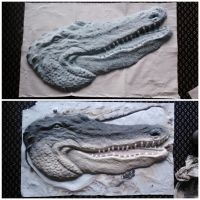 Ian's Alligator: Before and After by starbuxx